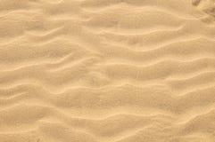 Sand Dune Desert Texture Stock Image