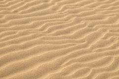 Sand Dune Desert Texture Royalty Free Stock Photography