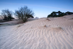 Sand dune in dusk Stock Photo