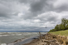 Sand dune erosion caused by Lake Huron wave action Stock Photos