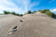 Sand dune and feet traces with grass and blue sky royalty free stock image