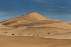 Sand Dune fields of Swakopmund Royalty Free Stock Image