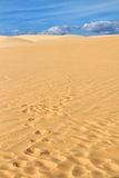 Sand dune with footprints Royalty Free Stock Photography