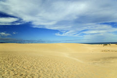 Sand dune in Fuerteventura Royalty Free Stock Image