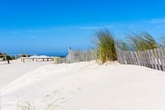 Sand Dune with grass at the seaside. Under blue sky Stock Photography