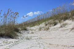 Sand dune on Hilton Head Island. A shot of a dune on Hilton Head Island Royalty Free Stock Images