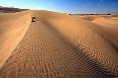 Sand dune, india Stock Photography