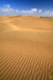 Sand dune, india Royalty Free Stock Image