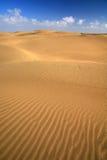 Sand dune, india Royalty Free Stock Image