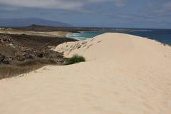 Sand Dune Royalty Free Stock Image