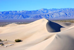Sand dune landscape. Sand dune in death valley national park Stock Images