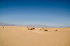 Sand dune landscape Death Valley National Park Royalty Free Stock Photos