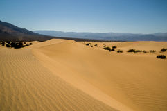 Sand dune landscape Death Valley National Park Royalty Free Stock Photography