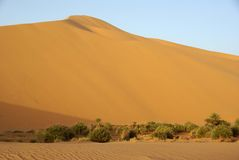 Sand dune, Libya Royalty Free Stock Images