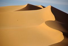 Sand dune, Libya Royalty Free Stock Photography