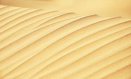 Free Sand Dune Lines Close Up Stock Photography - 119322912