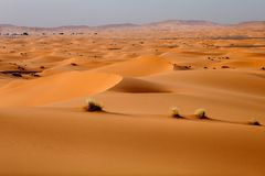 Sand dune in Morocco Stock Images