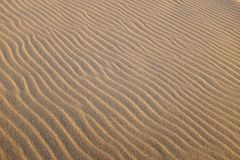 Sand dune with multiple waves formed by wind. Stock Photos