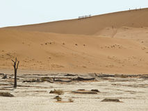 Sand Dune in Namib-Nauktuft National Park Namibia Royalty Free Stock Photo