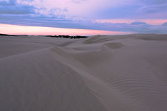 Sand Dune in Newcastle NSW Australia at sunset. Sand dune  is a popular place and the name of the surrounding suburb in Newcastle, New South Wales, Australia Royalty Free Stock Images