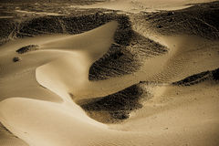 Sand Dune in Nubra Valley Royalty Free Stock Images
