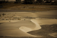 Sand Dune in Nubra Valley Royalty Free Stock Photos