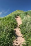 Sand Dune Path Royalty Free Stock Image