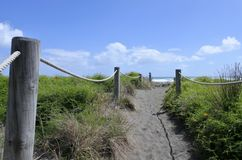 Sand dune path in Piha beach New Zealand. Sand dune path in Piha beach in the west coast on the North Island near Auckland, New Zealand stock photo