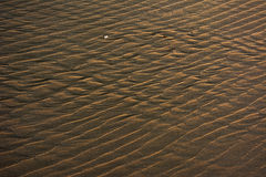 Sand dune pattern at the beach Stock Images