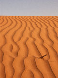 Sand dune pattern. From close distance royalty free stock photography