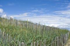 Sand dune restoration Royalty Free Stock Photo