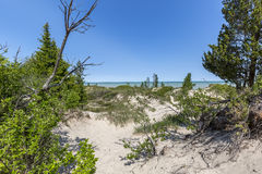 Sand Dune Ridge looking out over Lake Huron - Pinery Provincial Royalty Free Stock Images