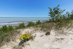 Sand Dune Ridge looking out over Lake Huron - Pinery Provincial Stock Photo