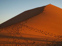 Sand dune ridge to summit with footprint in vast desert. In sunset light Royalty Free Stock Photography