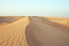 Sand dune ridge with wind marks Stock Images