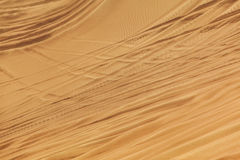 Sand dune in Safari Desert Royalty Free Stock Photos