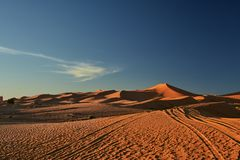 Sand dune, Sahara Desert. With gold sand and blue sky royalty free stock images