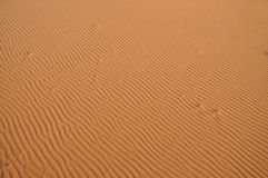 Sand dune in the Sahara desert Stock Image
