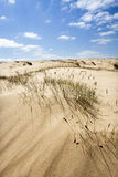 Sand dune with some grass Stock Photo