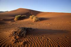 A sand dune Sossusvlei, Namibia,Africa Stock Photo