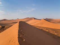 Sand Dune 45 in Sossusvlei, Namibia. Desert landscape Royalty Free Stock Photos