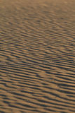 Sand dune 2 Stock Images