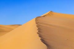 Sand dune in sunrise in the desert Stock Photos