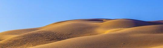 Sand dune in sunrise in the desert Stock Image