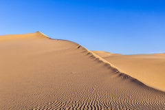 Sand dune in sunrise in the desert Stock Image