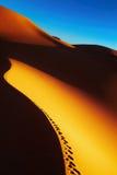 Sand dune sunrise, Sahara Desert, Algeria. Sand dune with footprints at sunrise, Sahara Desert, Algeria Royalty Free Stock Image