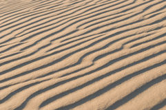 Sand dune texture. The Sand dune wave texture stock image