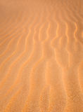 Sand Dune texture vertical background royalty free stock photos