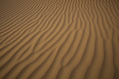 Sand Dune Texture in the Desert Stock Images
