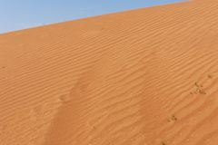Rippling Sand dunes in the blue sky royalty free stock photography